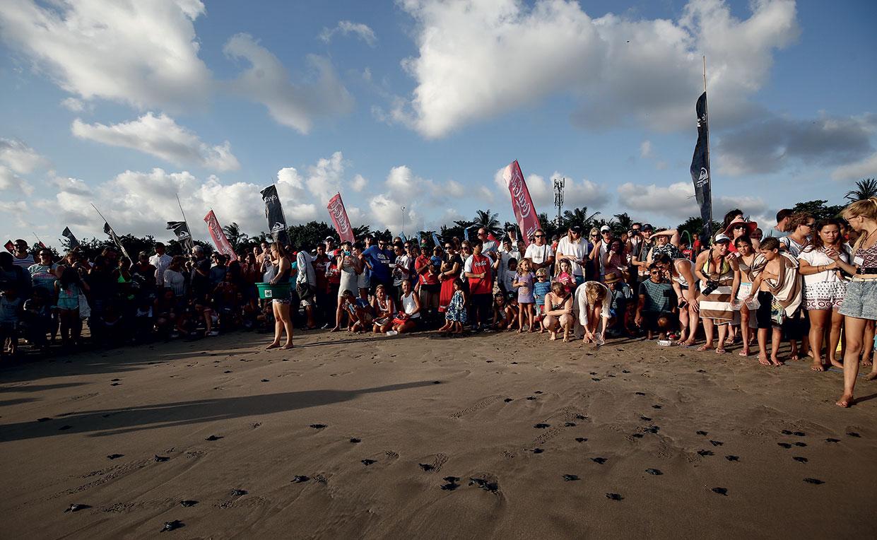 Bali Big Eco Weekend