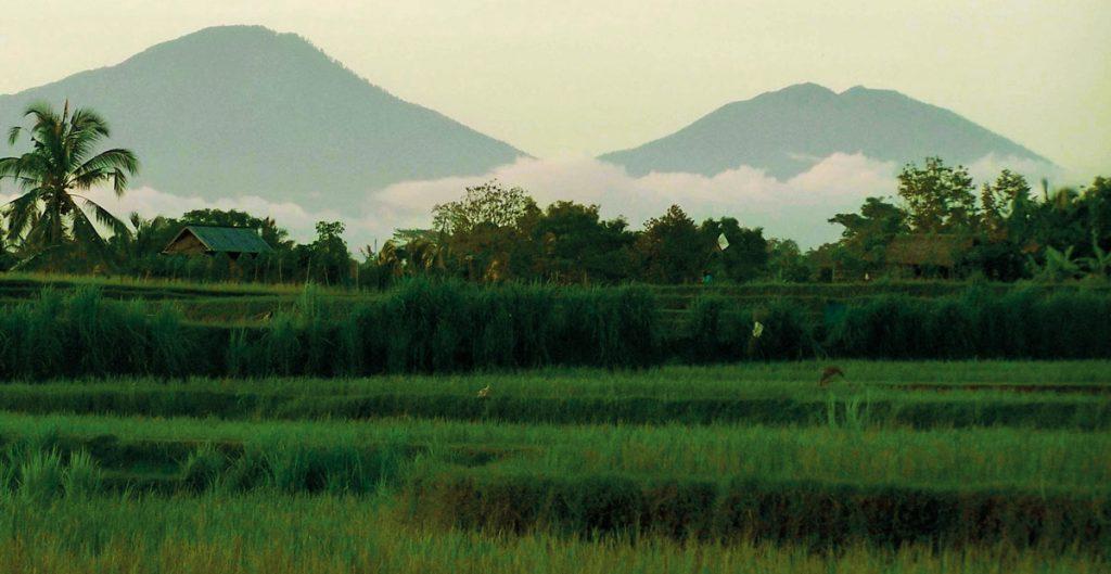 theme-wtd-trekking-ubud-bangkiang-sidem-village
