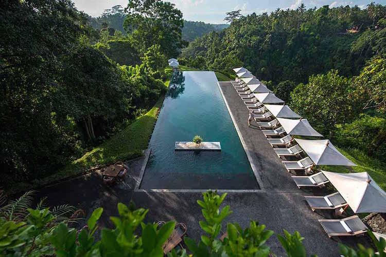 Alila Ubud Swimming Pool