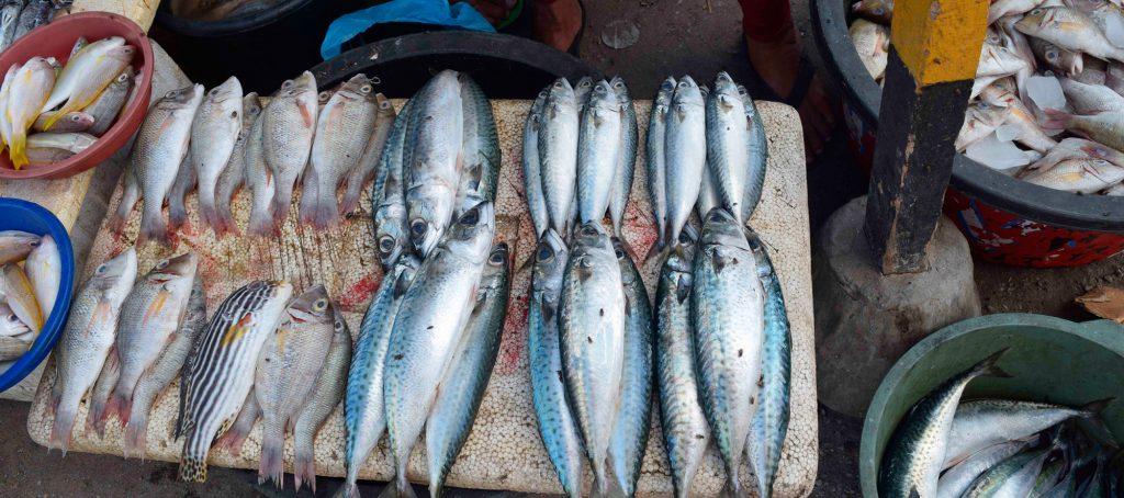 Theme - Traditional Food - Kedonganan Fish Market (6)