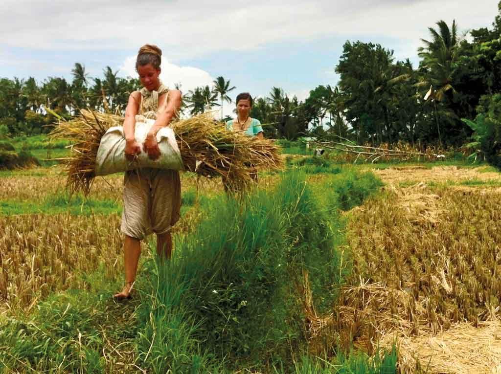 Charity-Profile---Sawah-Bali----Change-management-agrotourism