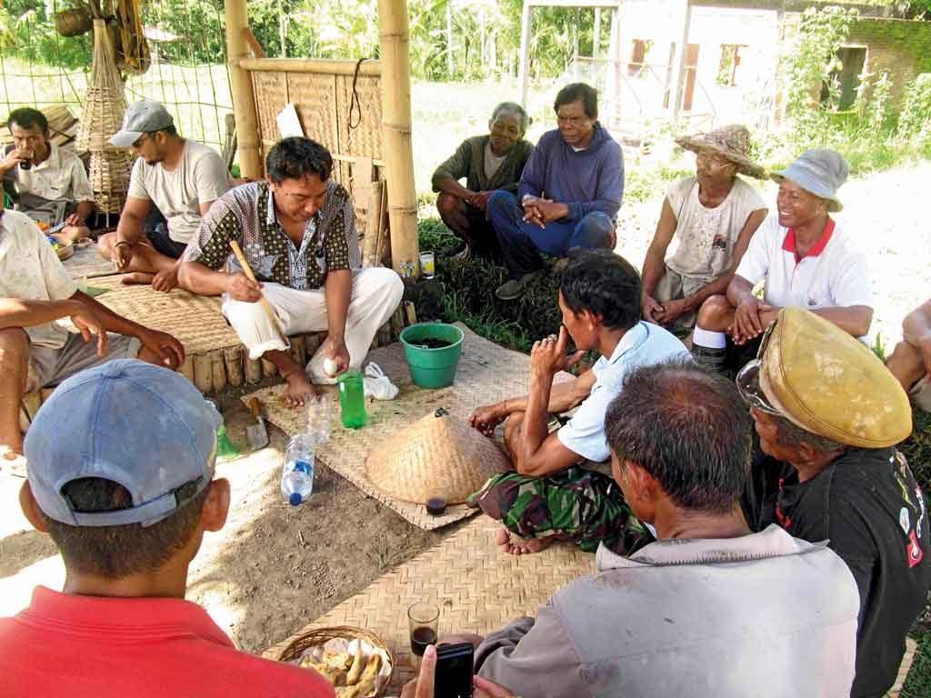 Charity-Profile---Sawah-Bali----Seed-Selection-workshop