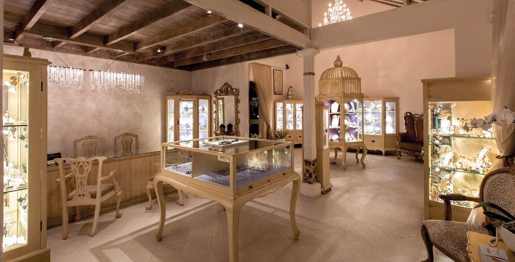 Theme - WTD - Jewellery Shopping - Jemme - interior (2)