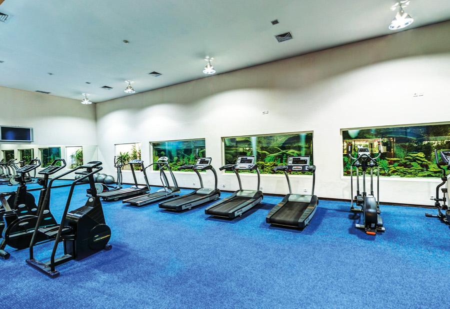 Theme - WTD - Fitness - DKPH Gym