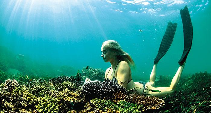 Theme - WTD - watersport - freediving - photo courtesy of Green Island Bali (1)