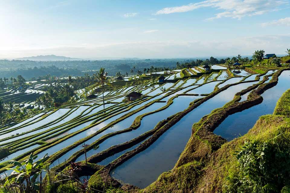 Overdevelopment in Bali