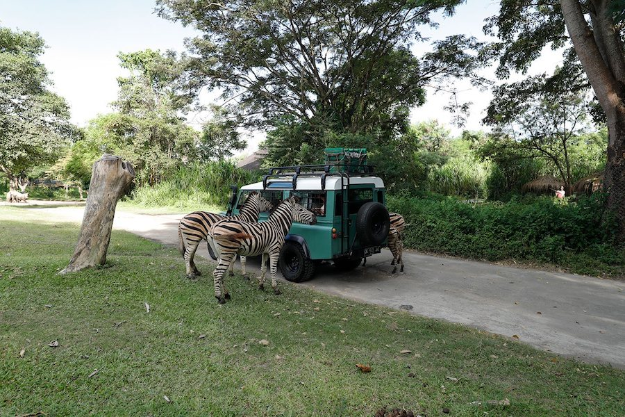 Bali Safari and Marine park 4X4 Jeep