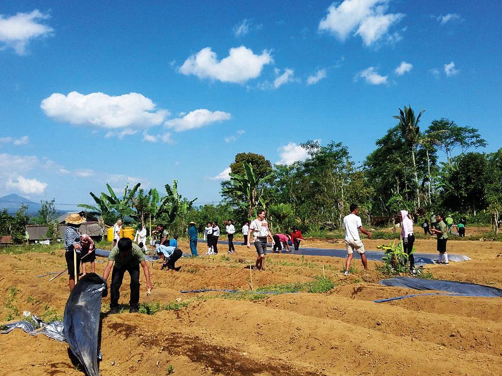 Future Farmers Indonesia