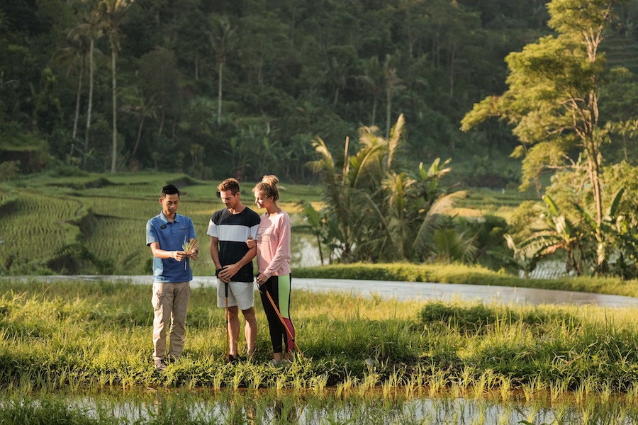 Saranam Resort and Spa Bedugul Bali 2