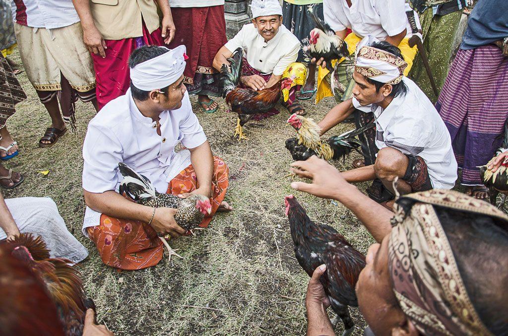 Bali's-exotic-(5)