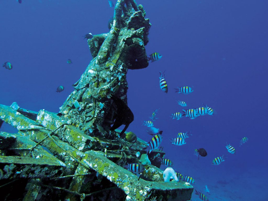 Diving in Bali - Amed Dive Sites
