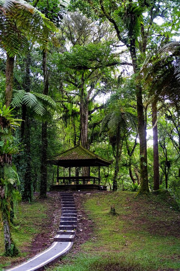 NB March 2020 - WTG Bedugul Bali - Botanical Gardens 5