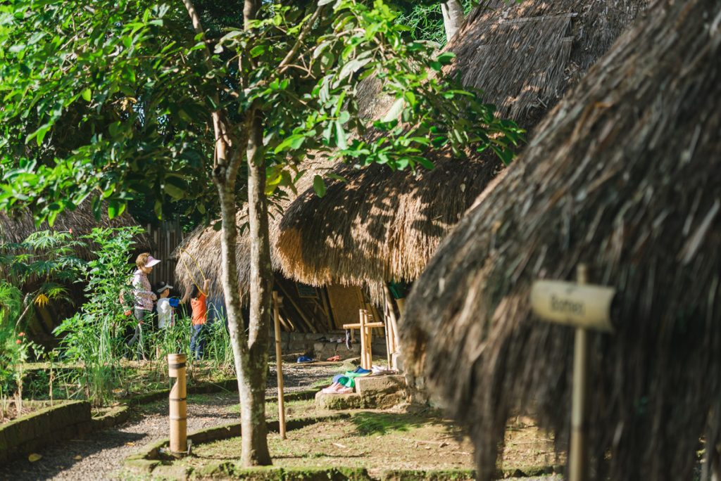 Green Camp Bali 3
