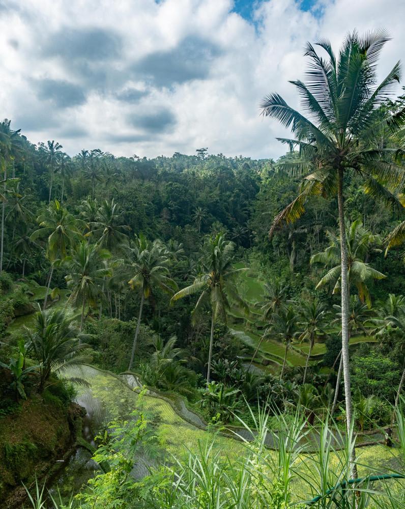 Pura Gunung Kawi Sebatu Bali 2
