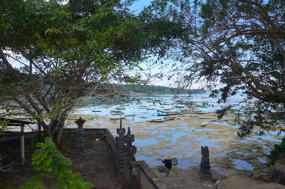 Seaweed farmers of Nusa Lembongan Bali