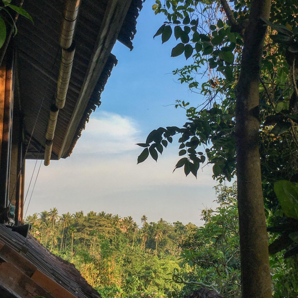 The Elephant Bali Vegetarian Restaurant Ubud