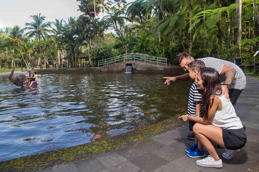 Bali for Kids - Mason Elephant Park 2