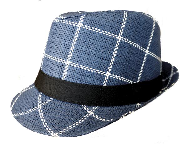 Fedora_Hat.jpg